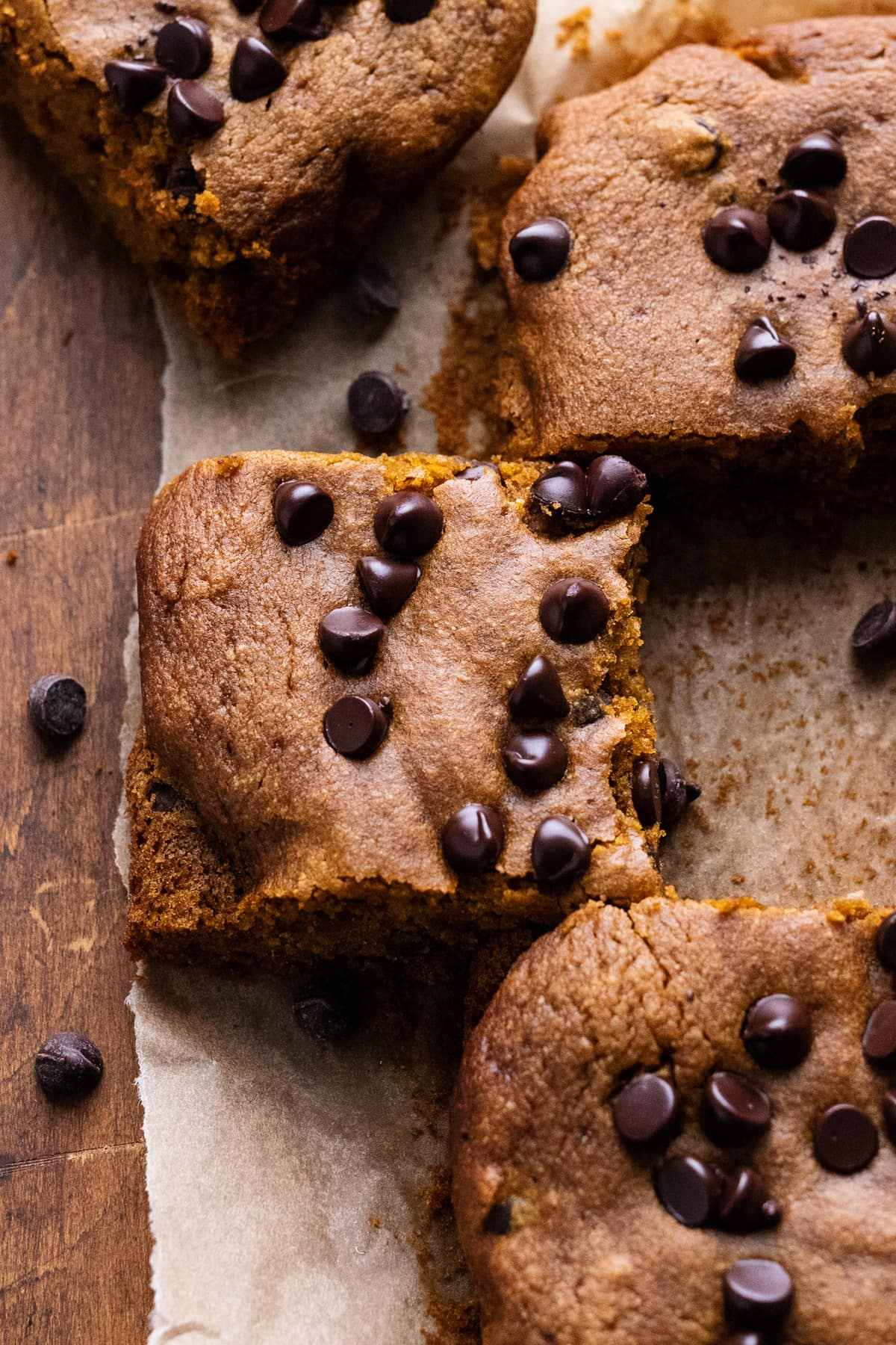 Slices of pumpkin blondie bars arranged on parchment paper with chocolate chips arranged around them.