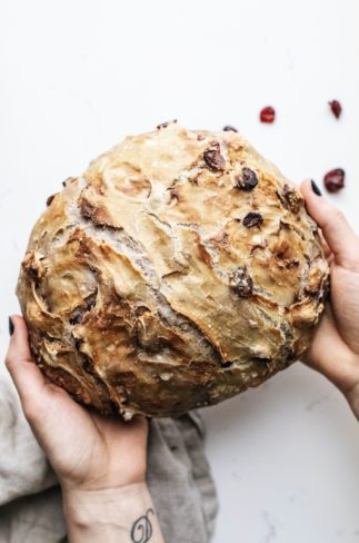 Hands holding baked bread with dried cranberries in the background.