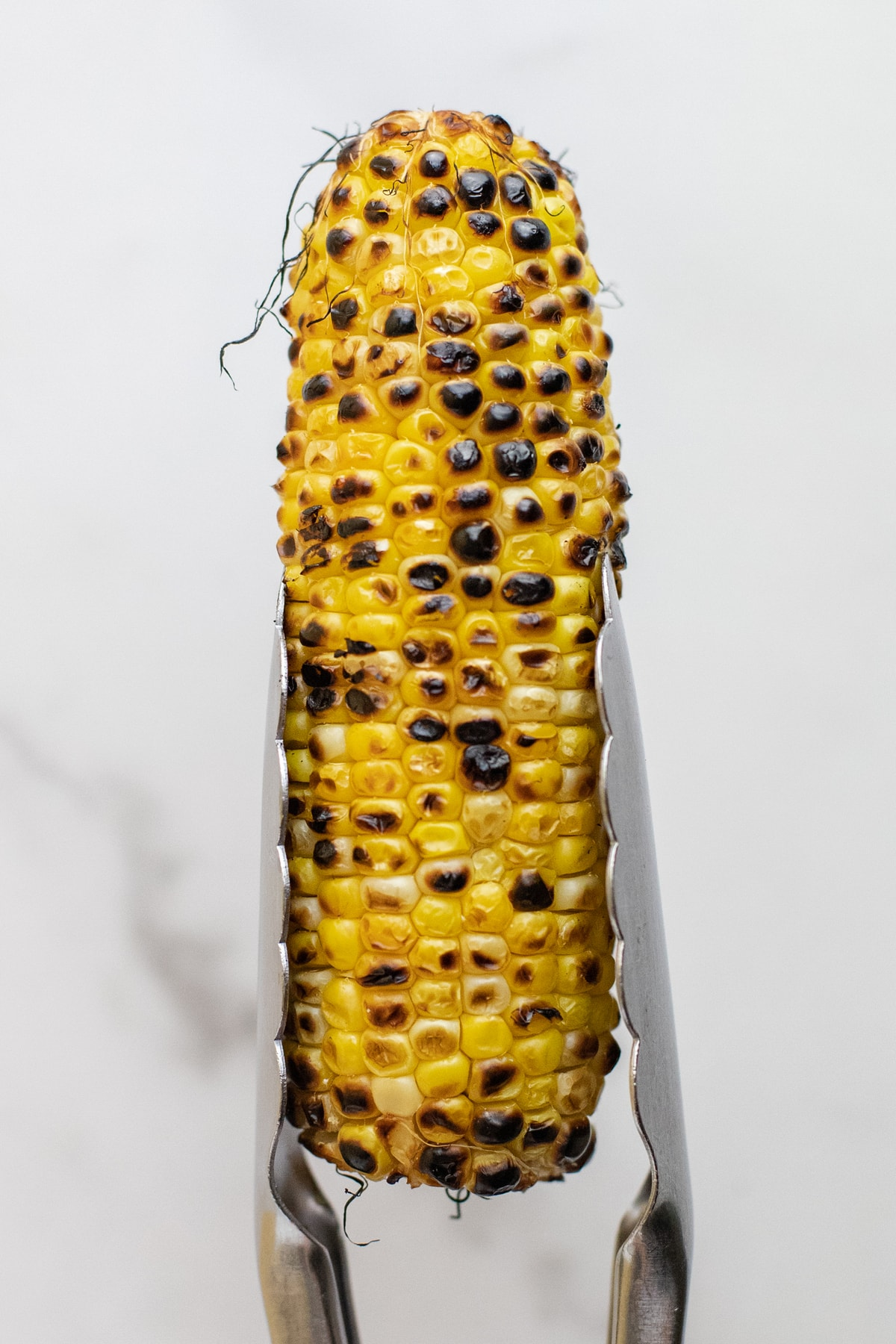 Silvers tongs holding grilled corn over a white background.